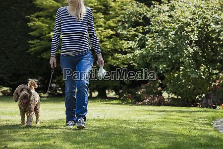dog walking responsibilities