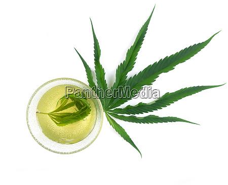 marijuana herbal tea served in glass