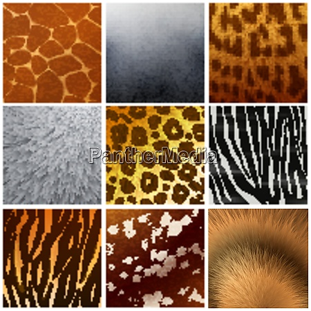 real and faux exotic fur skin