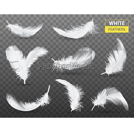 set of isolated falling white fluffy