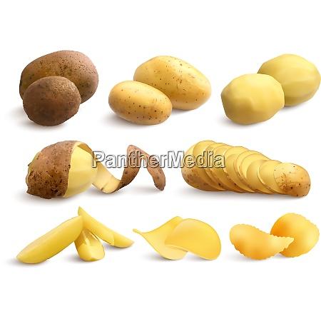 raw and fried potato set of