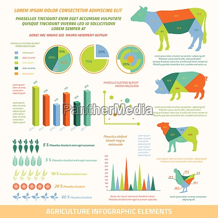 agriculture infographics flat design elements of