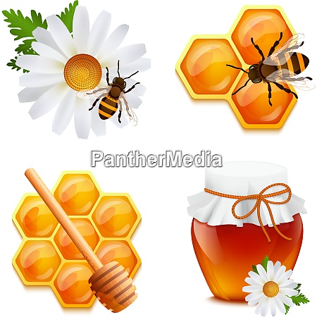 honey food decorative icons set with