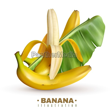 realistic banana background with editable text