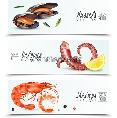 sustainable seafood choice 3 realistic horizontal