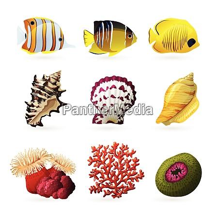 sea fauna decorative colored icons set
