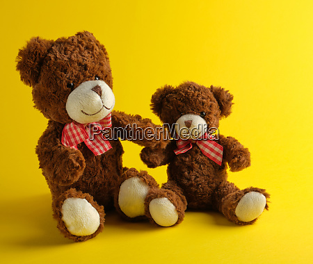 two brown teddy bears on a