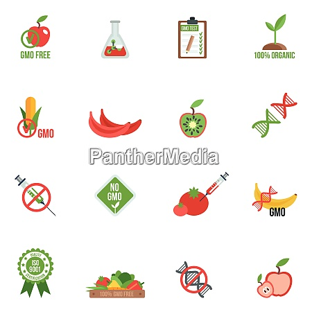 gmo with genes modified food and