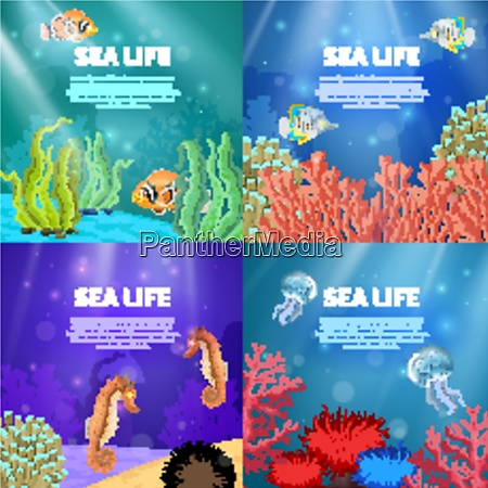 variants of underwater landscape with different