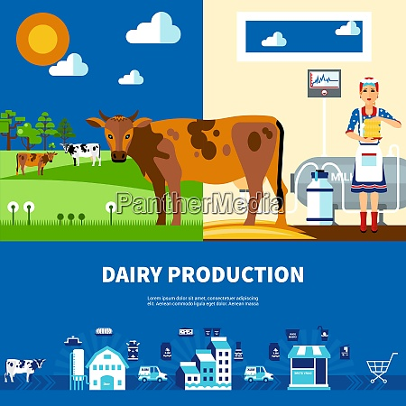 dairy production set with cows on