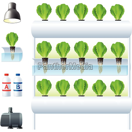 hydroponics system icon set with equipment