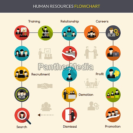human resources flowchart with search recruitment