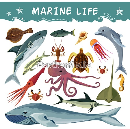 marine inhabitants cartoon decorative icons set