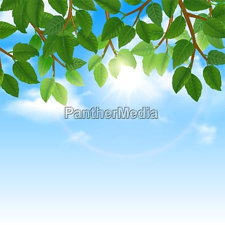 eco world of nature friendly lifestyle