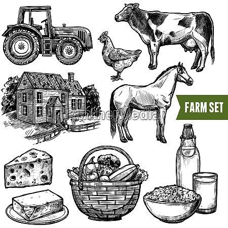 black and white organic farm set
