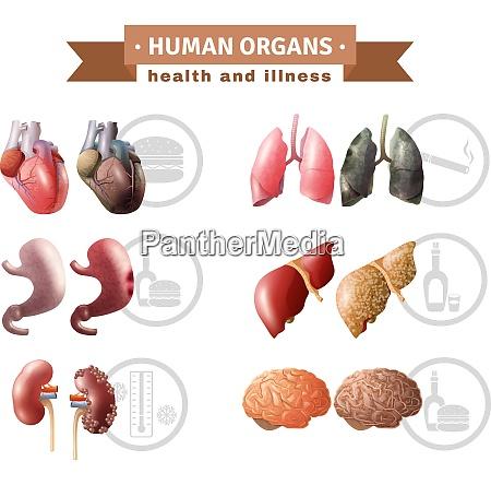 human organs health risk factors icons