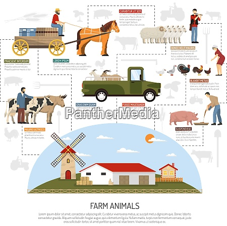 farm animals conceptual composition with flat
