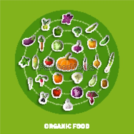organic food decorative paper icons with