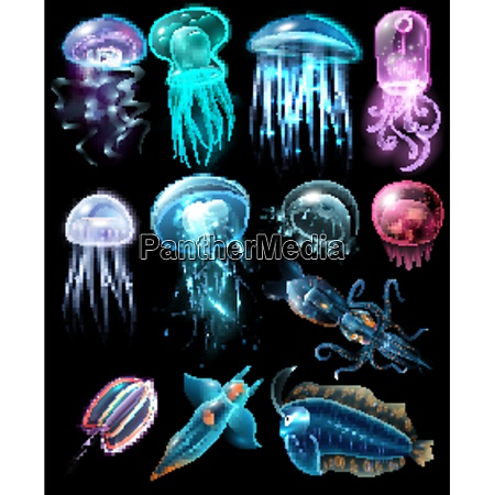 light and multicolored stylish underwater animals
