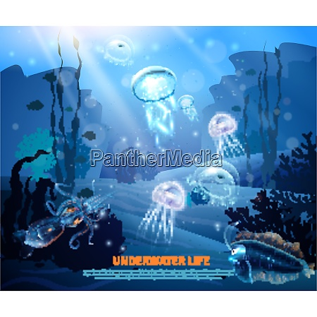 underwater world sea life poster with