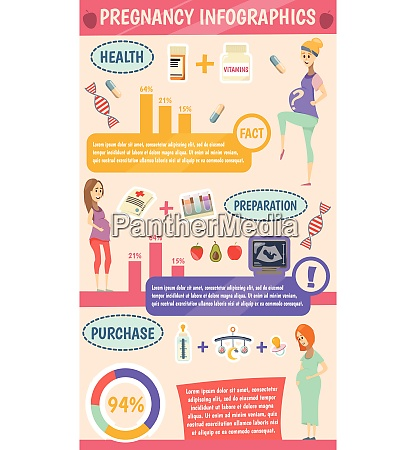 pregnancy cartoon infographics with information about