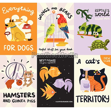 pets posters and banners set with