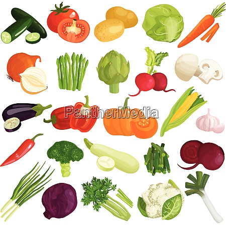 vegetables icons set with pumpkin cabbage