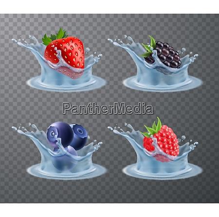 set of realistic berries strawberry raspberry