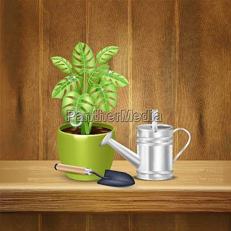 realistic herb background with decorative plant