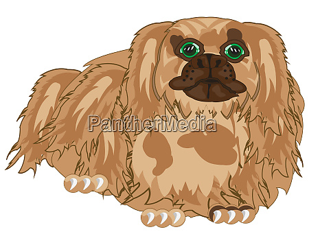 vector illustration of the dog of