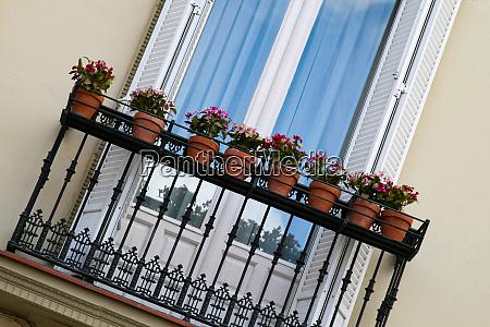 cliche balcony flowers