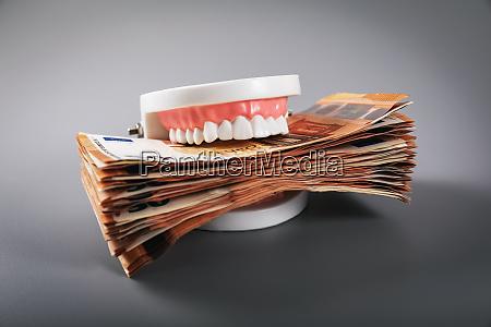 greediness concept teeth model eating
