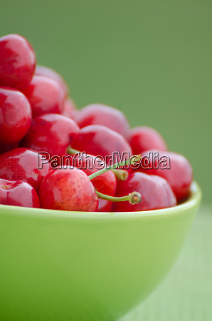 juicy cherry on garden