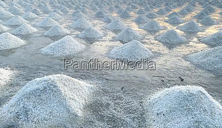 brine salt farm at samut sakhon