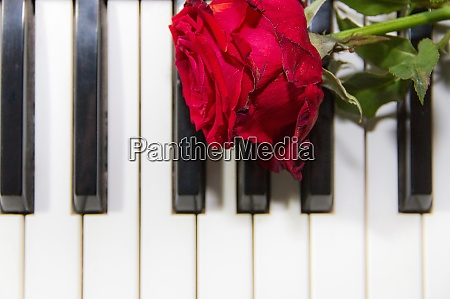 background of piano keys with a