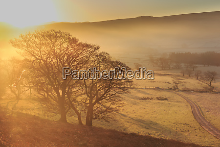 misty and frosty sunrise with a