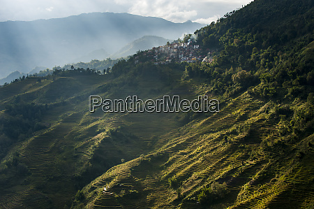 the yuanyang terraced rice paddies in