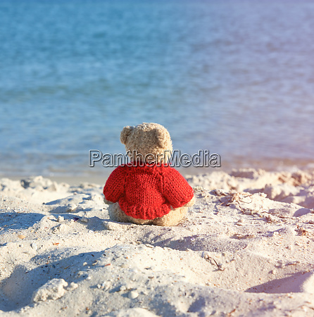 brown teddy bear in a red
