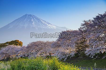 mount fuji 3776m unesco world heritage