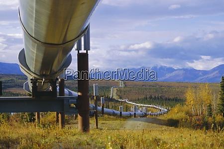 trans alaska oil pipeline across taiga