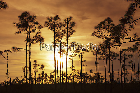 everglades national park unesco world heritage