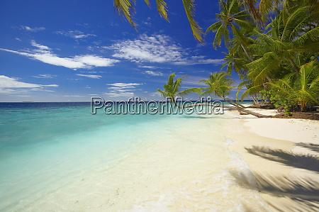 empty beach maldives indian ocean asia