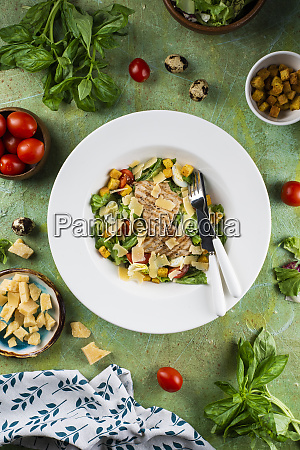 chicken salad with cheese and croutons