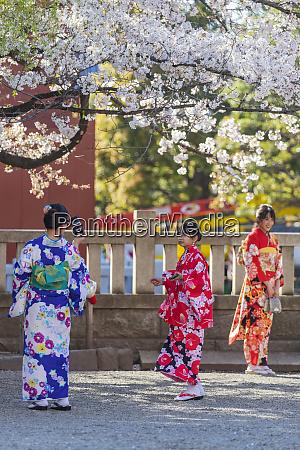 women in kimonos sensoji temple asakusa