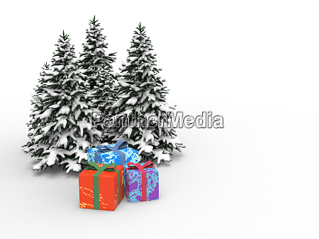 christmas tree forest with snow and