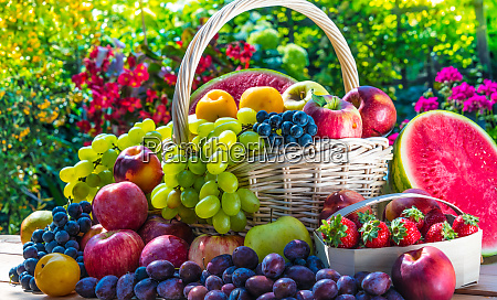 variety of fresh ripe fruits in