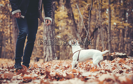 man romping around with his dog