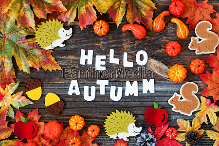 colorful autumn decoration text hello autumn