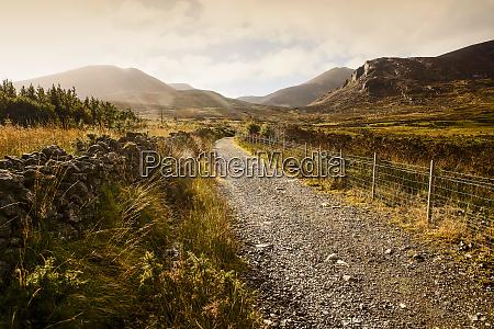 a gravel trail leads through a