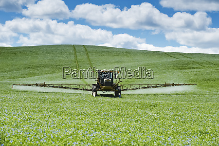 a high clearance sprayer applies fungicide
